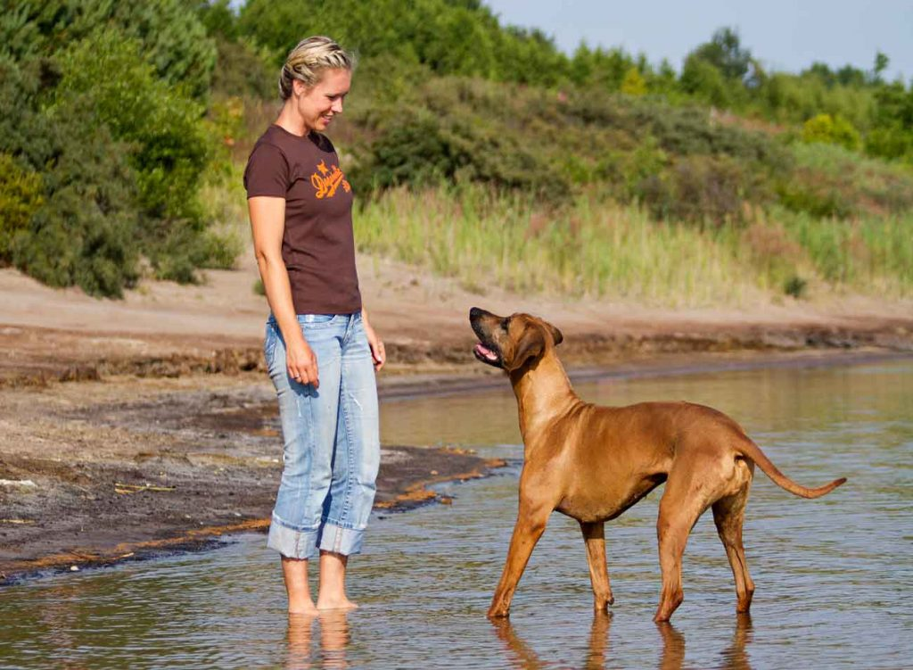 Sabine Bremer - Hundeschule Markkleeberg
